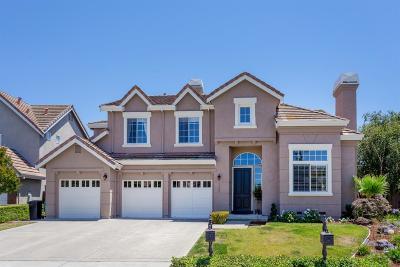 San Jose Single Family Home For Sale: 7245 Emami Drive
