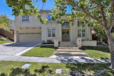 San Ramon Single Family Home For Sale: 9662 Velvet Leaf Circle