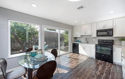 San Jose Single Family Home For Sale: 244 Moselle Court