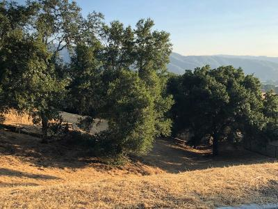Gilroy Residential Lots & Land For Sale: 2354 Banyan Street