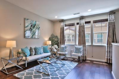 Milpitas Condo/Townhouse For Sale: 665 Barcelona Loop