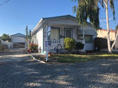 Fremont Single Family Home For Sale: 3339 Greenwood Drive
