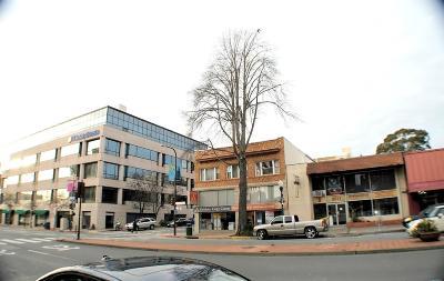 Berkeley Multi Family Home For Sale: 1949 Milvia Street
