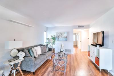 San Jose Condo/Townhouse Pending Show For Backups: 304 Tradewinds Drive #1