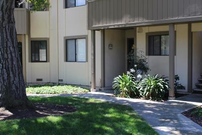 Milpitas Condo/Townhouse For Sale: 1097 N Abbott Avenue