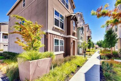 Newark Single Family Home For Sale: 38084 Luma Terrace