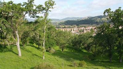 Gilroy Residential Lots & Land For Sale: 7413 Hoylake Court
