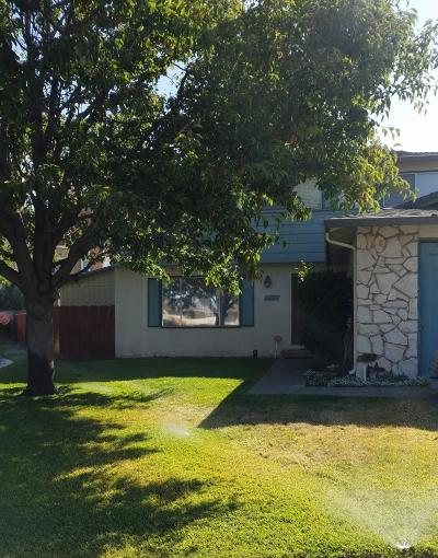 Milpitas Single Family Home For Sale: 10 Greentree Circle