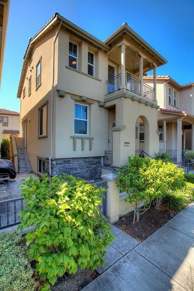 Milpitas Single Family Home For Sale: 366 Alvarez Common
