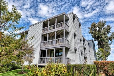 San Mateo Condo/Townhouse For Sale: 615 Port Drive #101