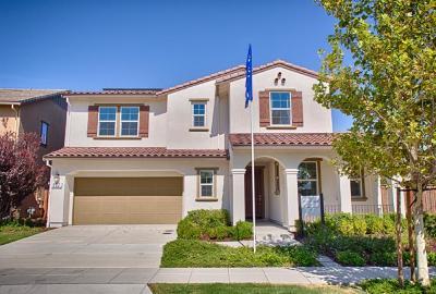 Mountain House Single Family Home For Sale: 957 S Walcott Avenue