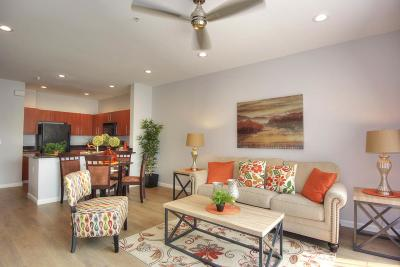 San Jose Condo/Townhouse For Sale: 1060 S 3rd Street #113