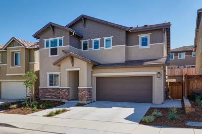 Gilroy Single Family Home For Sale: 1172 Sagardia Way
