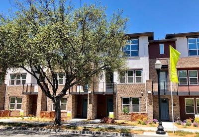 Sunnyvale Condo/Townhouse For Sale: 919 Delano Terrace #6