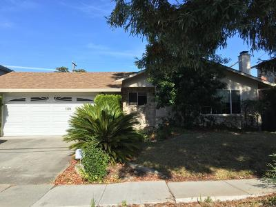Cupertino Rental For Rent: 1326 S Stelling Road