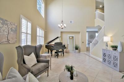 Brentwood, Discovery Bay, Oakley Single Family Home For Sale: 602 Ralston Court