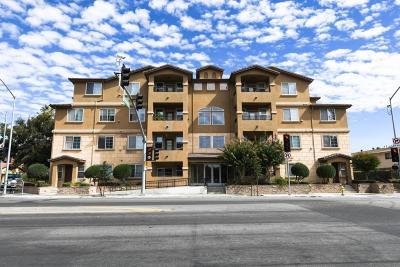 San Jose Condo/Townhouse For Sale: 88 N Jackson Avenue #221