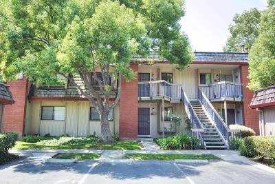 San Jose Condo/Townhouse For Sale: 3245 Shadow Park Place