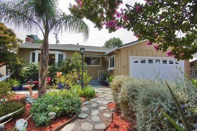 Milpitas Single Family Home For Sale: 1134 Park Grove Drive