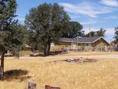 Livermore Single Family Home For Sale: 44500 San Antonio Valley Road