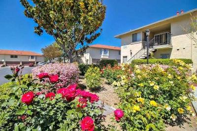 San Jose Condo/Townhouse For Sale: 126 Kenbrook Circle