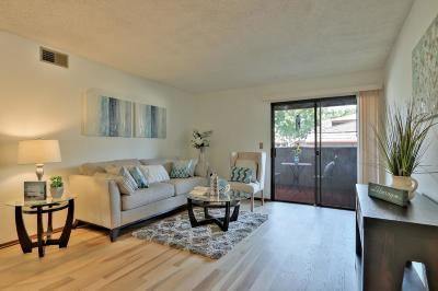 San Jose Condo/Townhouse For Sale: 3314 Shadow Park Place