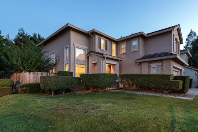 Hayward Single Family Home For Sale: 369 Bridgecreek Way