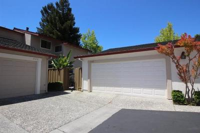Santa Clara Rental For Rent: 2091 Holly Branch Court