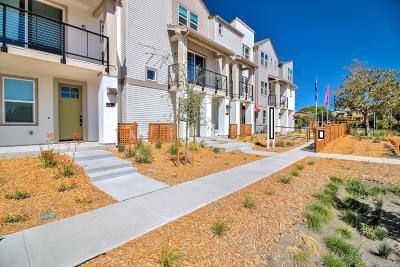 Sunnyvale Condo/Townhouse For Sale: 915 Cotati Terrace #6