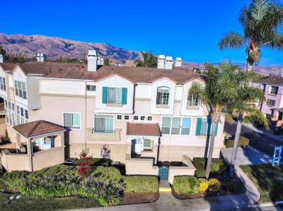 Milpitas Condo/Townhouse For Sale: 387 Montecito Way