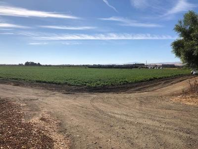 Tracy Residential Lots & Land For Sale: 21000 Mountain House Pkwy