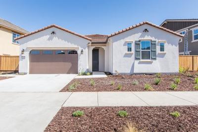 Gilroy Single Family Home For Sale: 2961 Grassland Way
