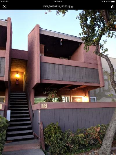 Milpitas Condo/Townhouse For Sale: 464 Dempsey Road #267