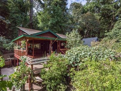 Los Gatos Single Family Home For Sale: 18086 Idalyn Drive