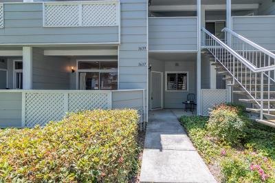 San Jose Condo/Townhouse For Sale: 1637 Thorncrest Drive