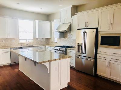 Milpitas Single Family Home For Sale: 513 Sweet Bay Drive