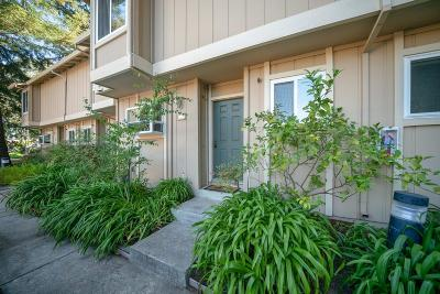 Mountain View Condo/Townhouse For Sale: 201 Flynn Avenue #7