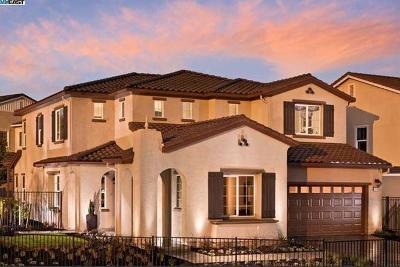 Dublin CA Single Family Home For Sale: $1,450,000