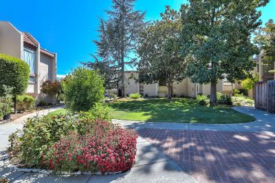 Cupertino Condo/Townhouse For Sale: 830 Hooshang Court