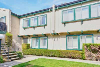 Santa Clara Condo/Townhouse For Sale: 1031 Clyde Avenue #903