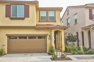 Tracy Single Family Home For Sale: 1646 Glazzy Lane