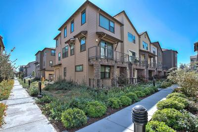Hayward Condo/Townhouse Pending Show For Backups: 509 Staccato Place