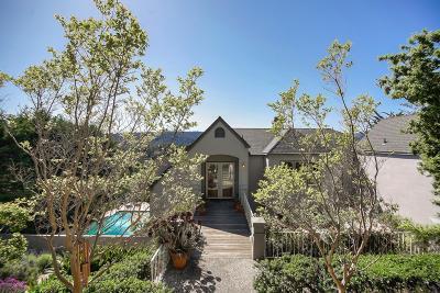 Santa Cruz Single Family Home For Sale: 17 Panorama Lane