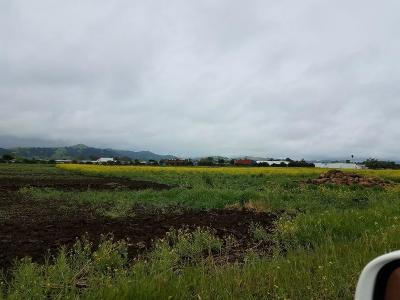 Gilroy Residential Lots & Land For Sale: 11555 Kannely Lane