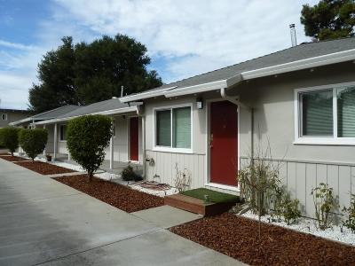 Mountain View Multi Family Home For Sale: 236 Higdon Avenue