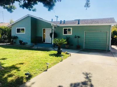 Milpitas Single Family Home For Sale: 260 Mazey Street