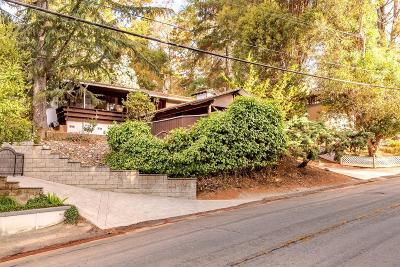 Castro Valley Single Family Home For Sale: 17793 Vineyard Road
