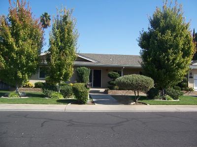 Ripon Single Family Home For Sale: 380 Oak Avenue