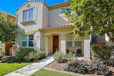 Gilroy Single Family Home For Sale: 7926 Spanish Oak Circle