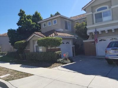 San Jose Single Family Home For Sale: 3354 Casalegno Court